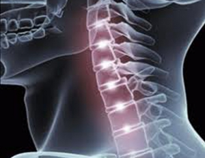 CHIROPRACTIC ADJUSTMENT & SPINAL MANIPULATION